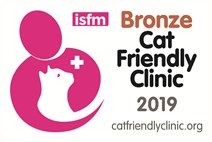 Cat friendly clinic bronze award
