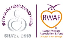 Rabbit friendly vet logo SILVER