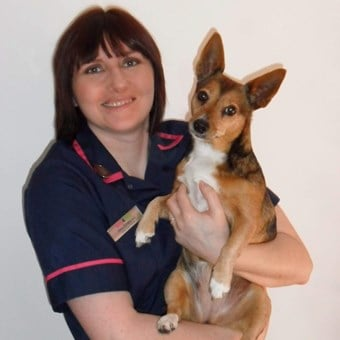 Cramington Vets4Pets Amy Emery