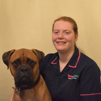 Vets In Cheadle Vets4pets