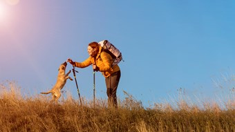 dog and owner on walk mountain