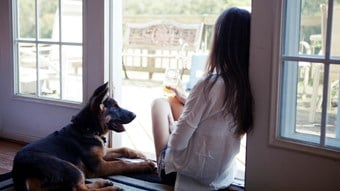dog and girl sat by window