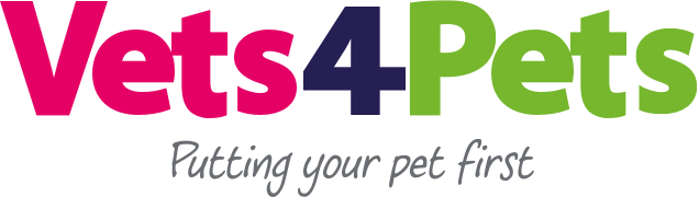 Pet Passports | Travelling With Your Pet | Vets4Pets